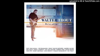 Walter Trout- she listens to the blackbird sing (feat. mike zito)