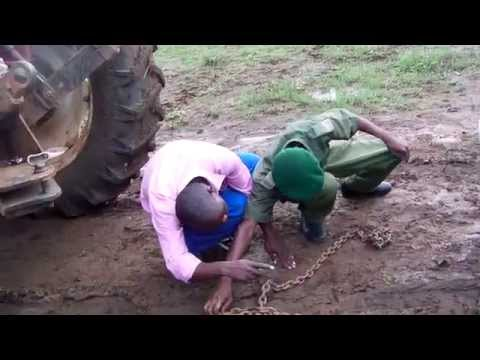Kyle Rhino Game Park Masvingo Zimbabwe Abschleppen Auf Safari