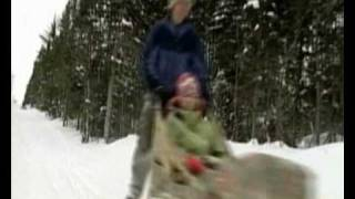 Western Newfoundland - Adventure And Activities Dog Sledding