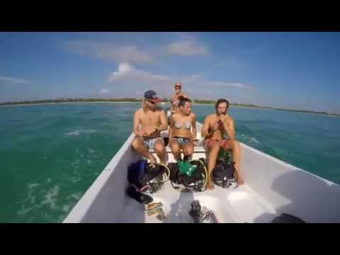 GVI Marine Conservation in Mexico! GoPro