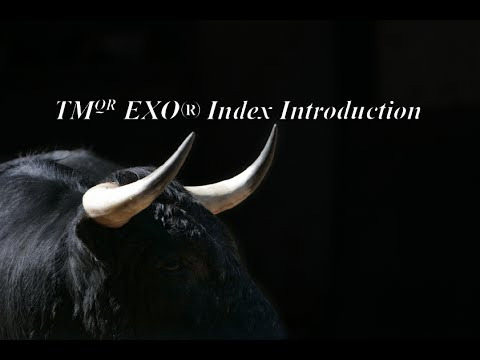 TMQR EXO® Index Introduction