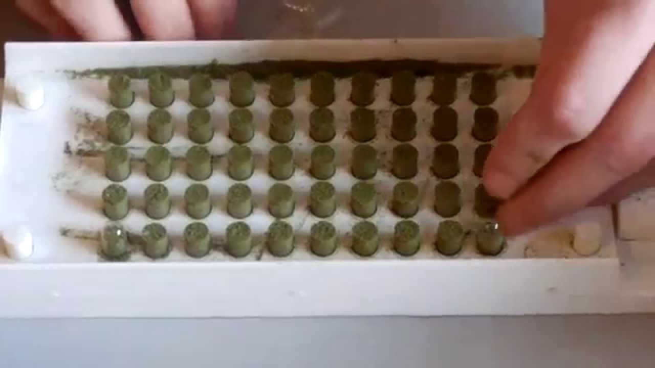 How to make Medical Marijuana Pills or Cannabis Capsules (bad ...