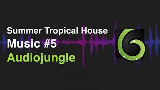 Summer Tropical House by Raizr (Audiojungle)