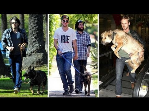 Kristen Stewart, Ryan Gosling, and More Celebs Talk About Their Pets