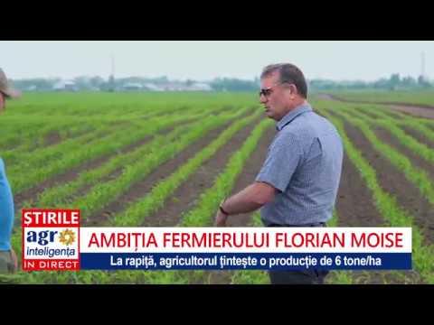 fermierul priceput 2