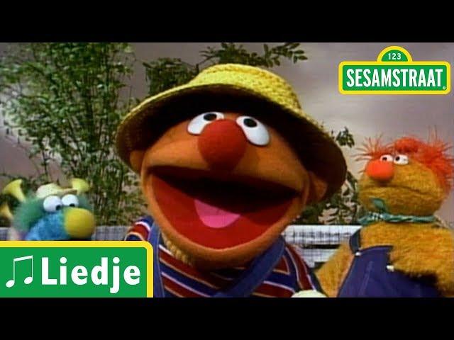 De huisje boompje beestje horlepiep - Ernie - Liedje - Sesamstraat