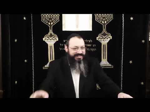 Chabad Odessa: раввин Довид Фельдман  гл  Мишпатим 5780
