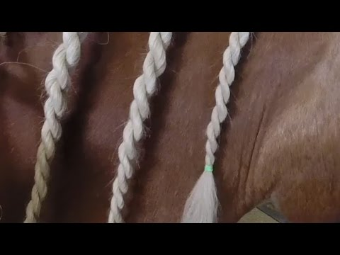 Unicorn Braid on Horse Mane
