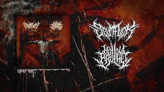 HOLLOW PROPHET / SCUMFUCK - SPLIT [OFFICIAL STREAM] (2018) SW EXCLUSIVE