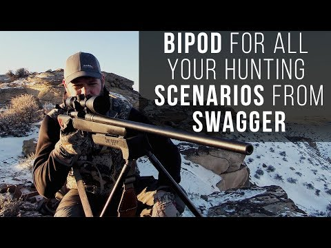 The Swagger BiPod Review