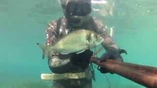 Sığ Su Zıpkın Avları 3 (Çupra,Levrek) - Shallow Water Spearfishing e3