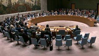 UN Security Council discusses Syria crisis