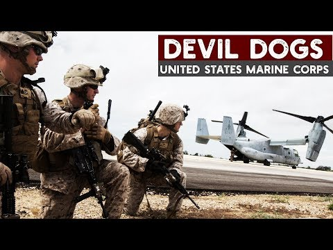 USMC | Mad dogs of the US marine corps