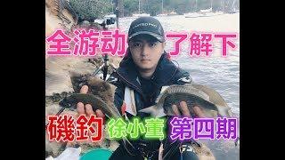 【磯釣】第四期 MrXu 徐小董 悉尼矶钓之 全游动来了解下 sydney fishing