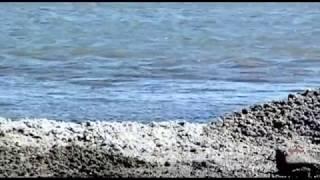 Солончаковое озеро Барса Кельмес. Достопримечательности Узбекистана.