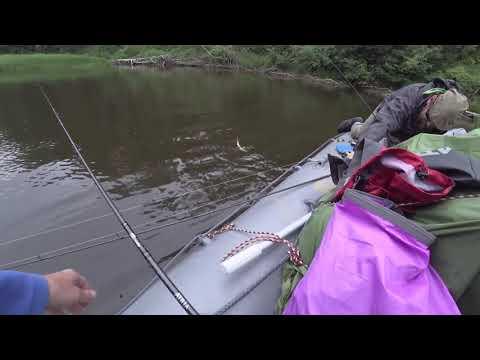 Сплавная рыбалка по Западной Двине.