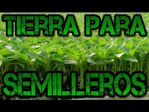 Tierra para semilleros youtube - Tierra para semilleros ...