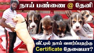 Dog Kennel | Beagle Puppy | Labrador Puppy | Boxer Dog | தேனியில் நாய் பண்ணை |Best breeds Less Price