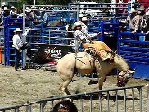 Mission Viejo Rodeo Slow Motion - Beautiful Bareback Bronc Ride
