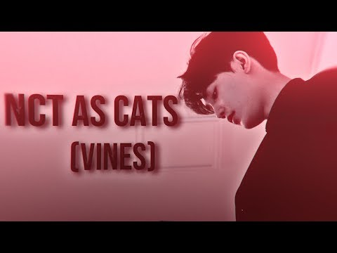 #1 NCT as Vines (CATS version)