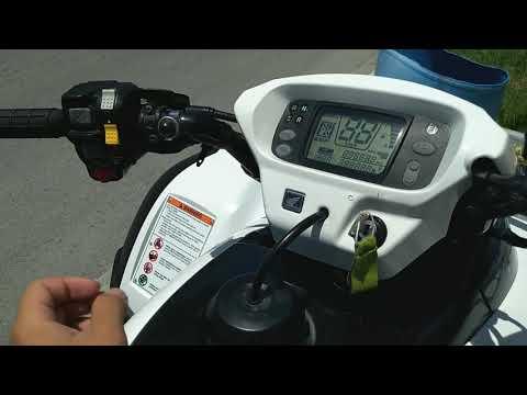 Honda Rincon 680 white