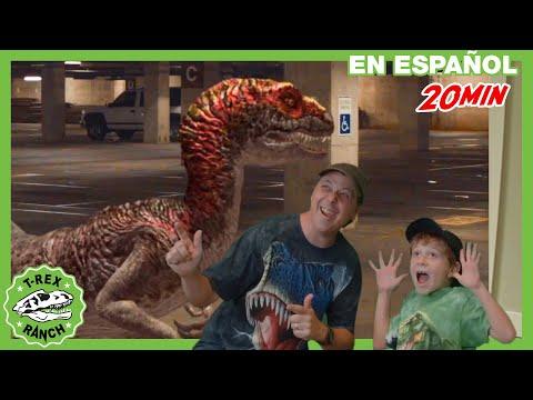 Parque De T-Rex | Persecución De Raptor En El Evento Descubre Los Dinosaurios Para Niños
