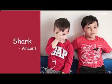 New Jersey's Abbott Preschool Success Story (NJ)