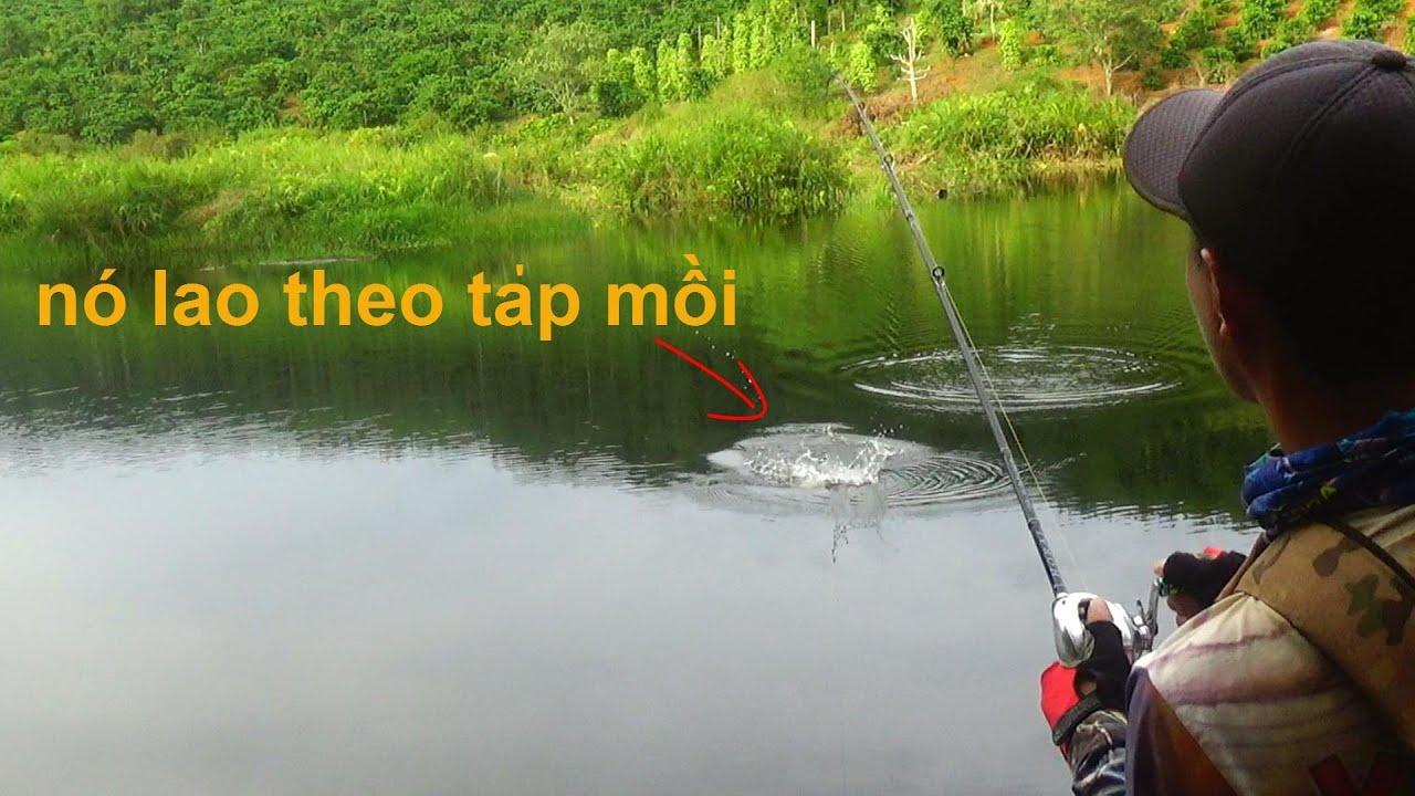 Đánh nhái lắc xa bờ đã lên 1 cặp cá lóc quá đã