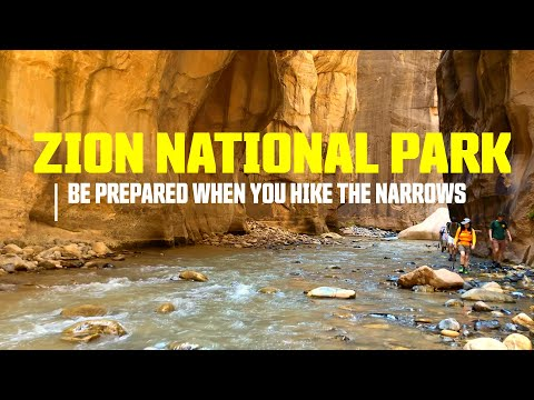 What to Know Before Hiking the Narrows at Zion National Park Utah - The Mighty Five Part 1 : Ep.18