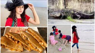 Pakistani family fun at American beach 🏖 aj to alligator road pe aa gia