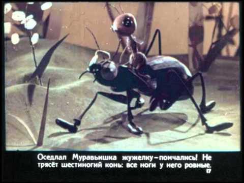 Как муравьишка домой спешил Сказка Бианки. Аудиосказка в картинках