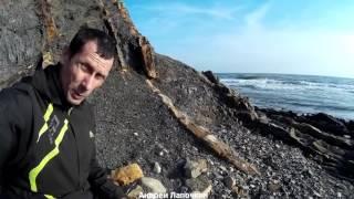 Выживание на Чёрном море. 10 способов не быть голодным у Чёрного моря. Отдых дикарём  2-я ч.(Обзор дикого места отдыха на Чёрном море. Сосняк Криница – Бетта на Чёрном море. Дикий отдых на Чёрном море..., 2016-03-12T12:18:10.000Z)