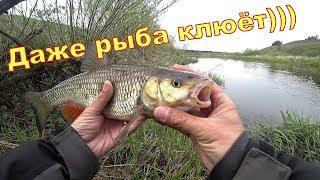 Рыбалка на спиннинг с берега И даже рыба клюёт