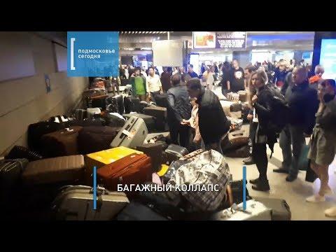 В аэропорту Внуково багажная лента «сошла с ума» и раскидала чемоданы пассажиров