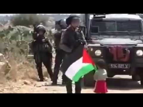 Israel and Palestine - the truth you won't see in the media