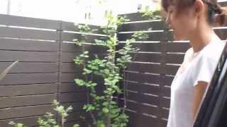 建売住宅のお庭を施工させて頂いた秋元様にインタビューしてきました。 ...