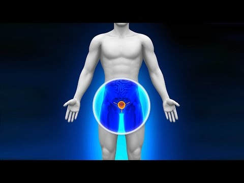 Different Prostate Cancer Treatment Options: Dr. David B. Samadi
