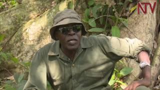 Brig. Kasirye Ggwanga: Nze Gen. Muhoozi tajja kumpa biragiro thumbnail