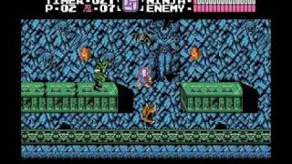LSRG: Ninja Gaiden #10: And I lose it