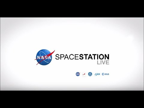Space Station Live: Gauging How Well They Work