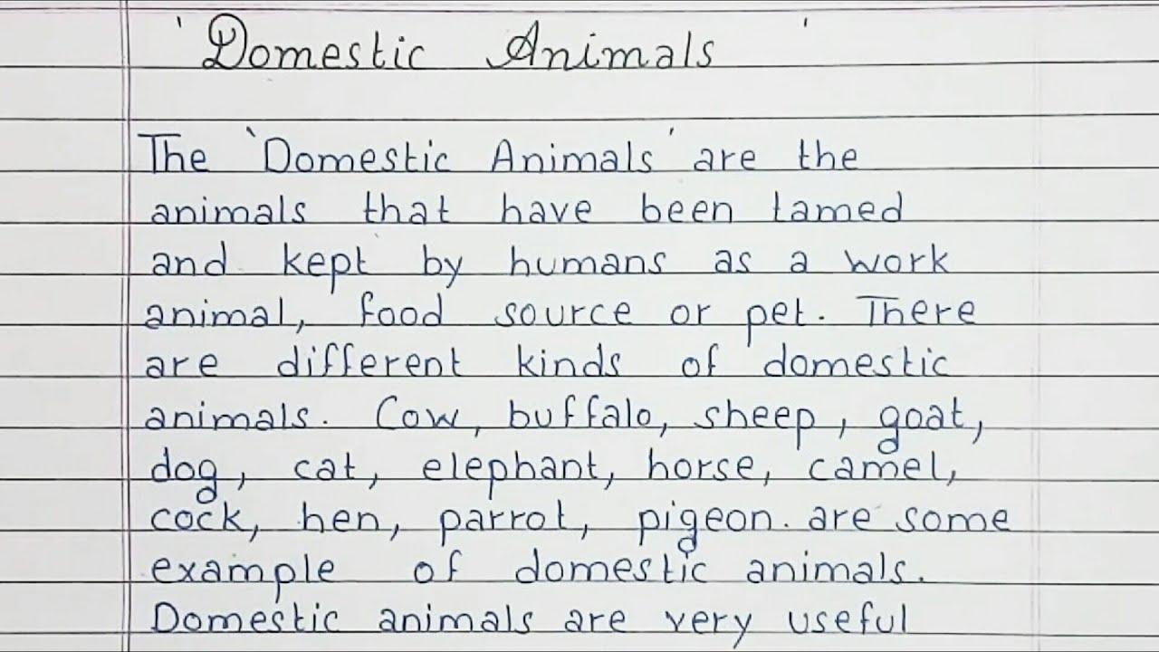 Essay on domestic animals