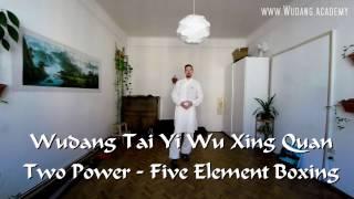 Wudang Tai Yi Wu Xing Quan Full Class (Five Element Boxing) Tutorial