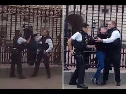Man arrested after climbing front gates of Buckingham Palace
