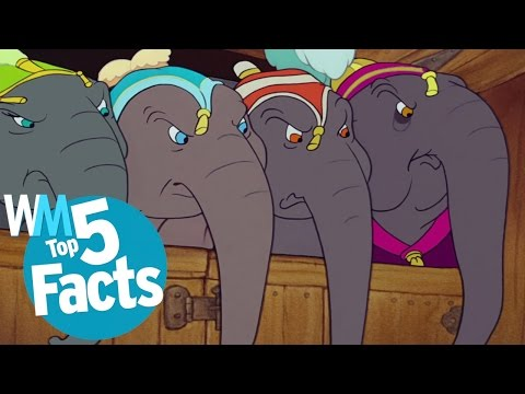 Top 5 Surprising Elephant Facts