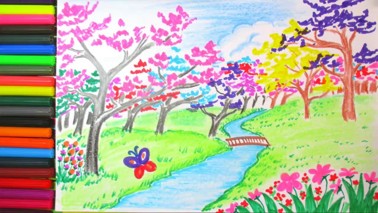 Drawing Spring Season And Cherry Blossom Flower Scenery