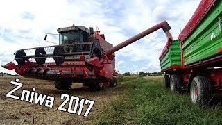 Żniwa 2017 | GROCH | Massey Ferguson 34 | Bizon ZO56 | Massey Ferguson 5425 | Sony as200v | HD
