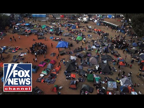 Tucker on mass migration's effect on our environment