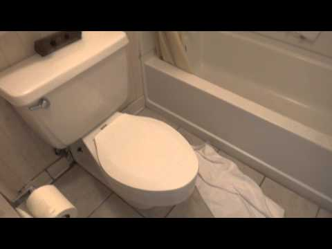 Bathroom Tour: American Standard Toilet at a hotel