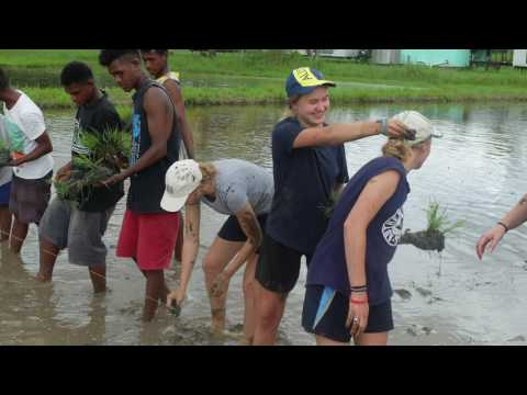 Solomon Islands Immersion 2017