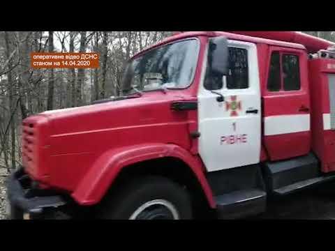 Триває гасіння лісових пожеж на території Зони відчуження безумовного (обов'язкового) відселення